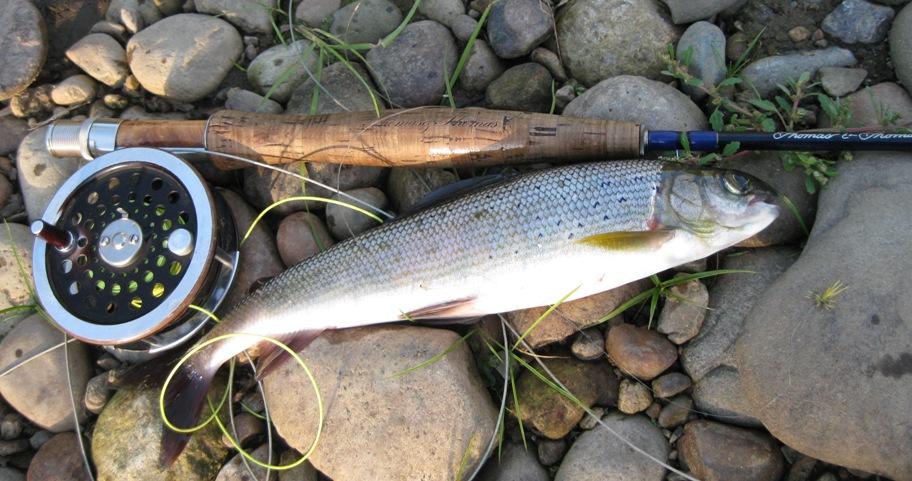 видео таежная рыбалка на хариуса